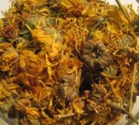 Ringelblumenblüten mit Kelch